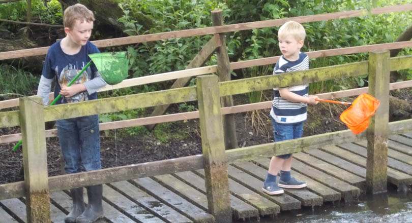 Pond dipping and nature fun at Hough Mill Swannington